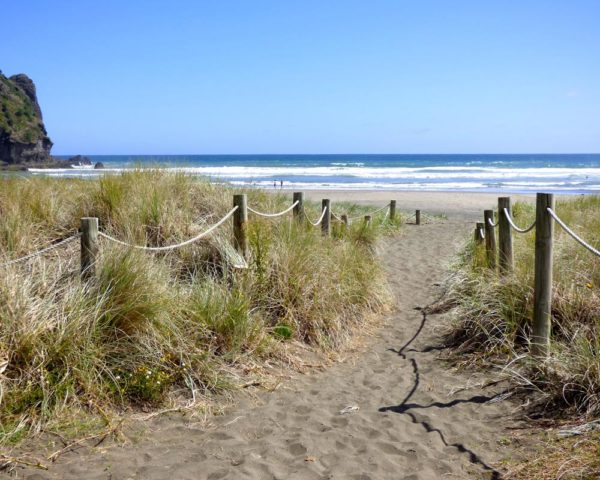 Entrance to Piha Beach