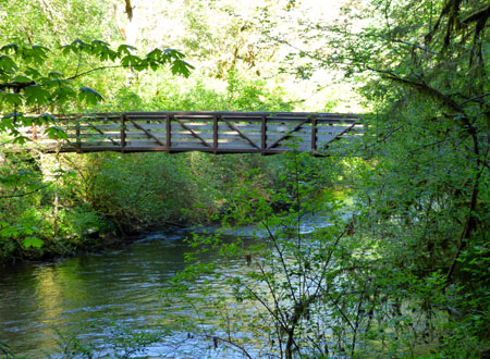 One of the many bridges at Silver Falls State Park