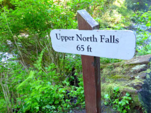 Signage for Upper Falls at Silver Falls State Park